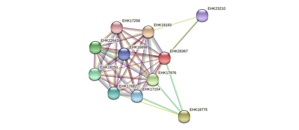 EHK26367 protein (Hypocrea virens) - STRING interaction network