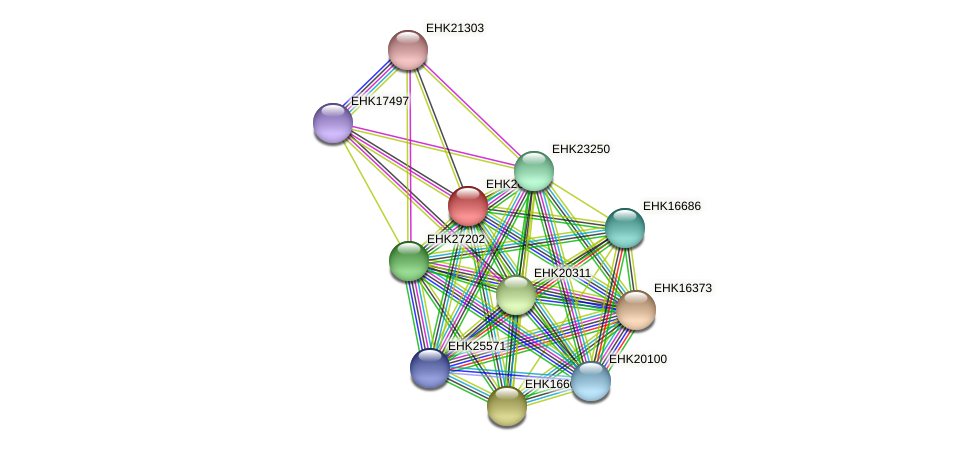 EHK26681 protein (Hypocrea virens) - STRING interaction network
