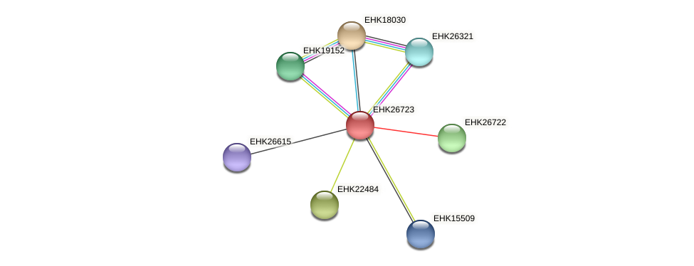 EHK26723 protein (Hypocrea virens) - STRING interaction network