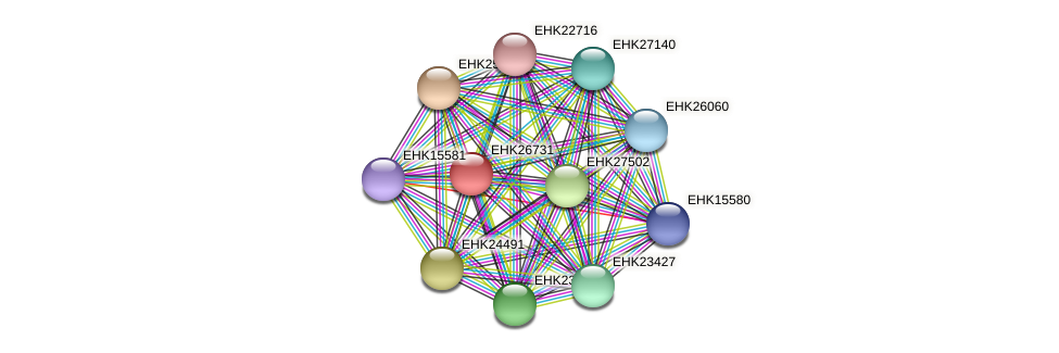 EHK26731 protein (Hypocrea virens) - STRING interaction network