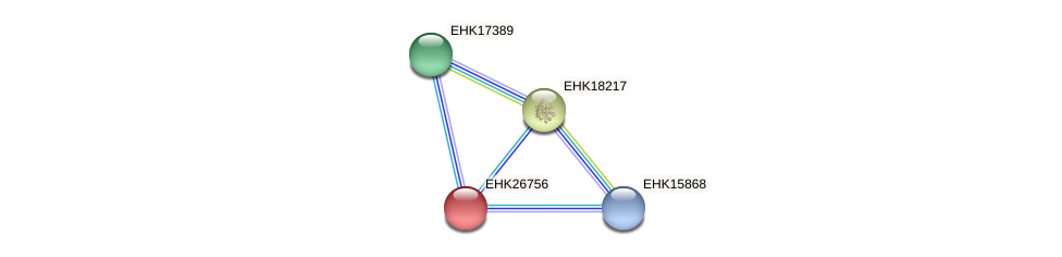 EHK26756 protein (Hypocrea virens) - STRING interaction network