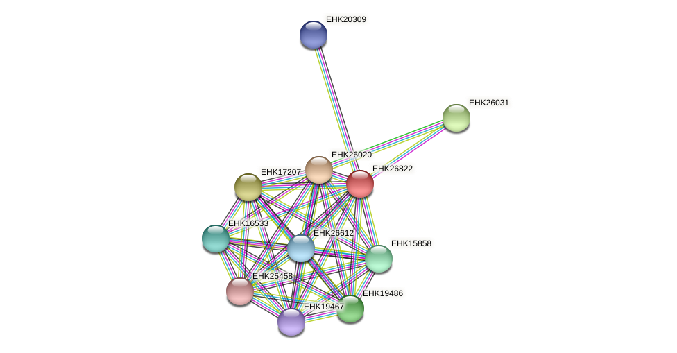 EHK26822 protein (Hypocrea virens) - STRING interaction network