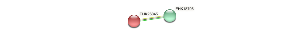 EHK26845 protein (Hypocrea virens) - STRING interaction network
