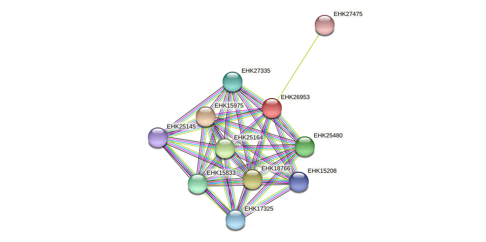 EHK26953 protein (Hypocrea virens) - STRING interaction network