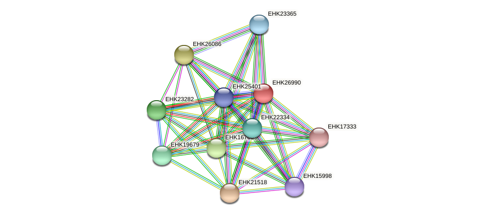 EHK26990 protein (Hypocrea virens) - STRING interaction network
