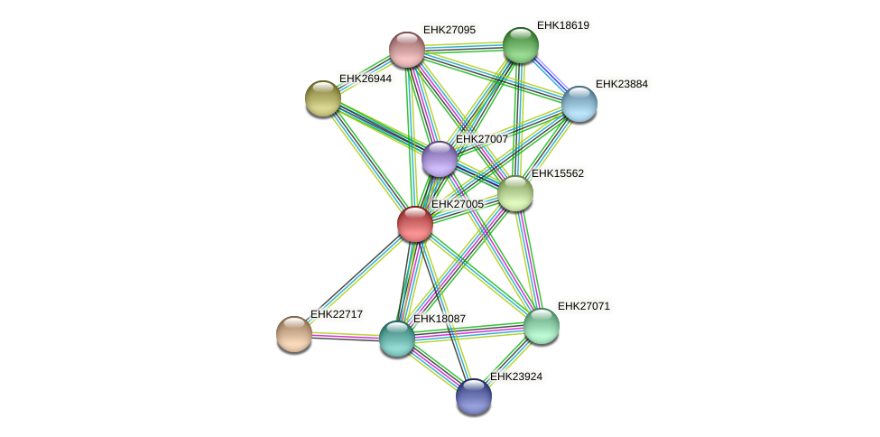 EHK27005 protein (Hypocrea virens) - STRING interaction network