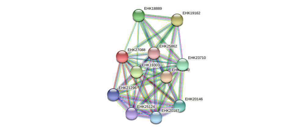 EHK27088 protein (Hypocrea virens) - STRING interaction network