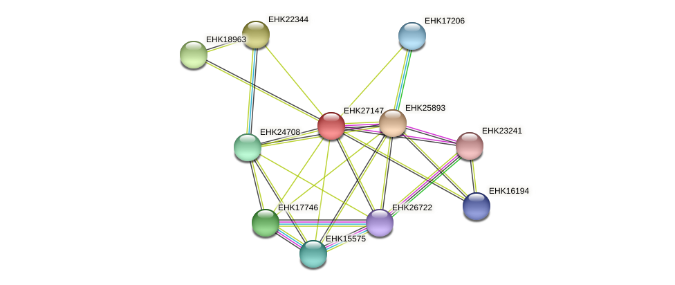 EHK27147 protein (Hypocrea virens) - STRING interaction network