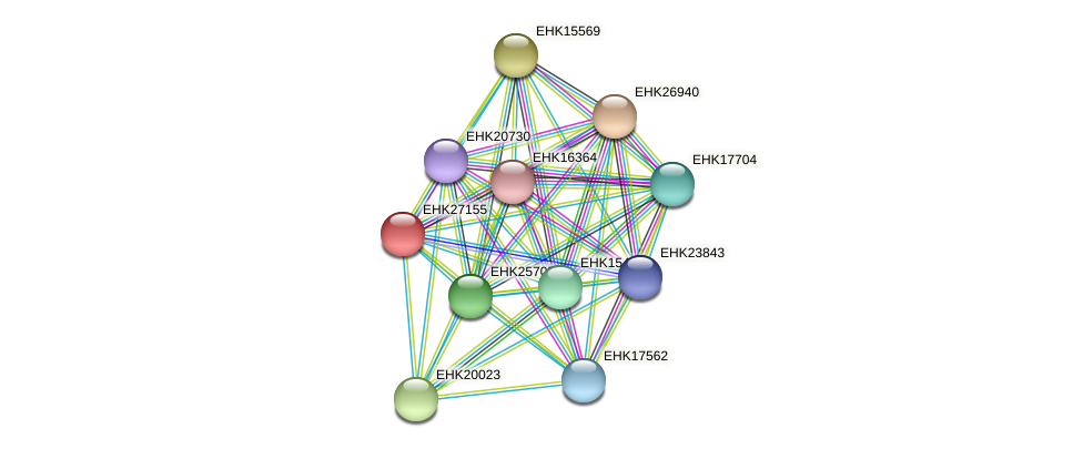 EHK27155 protein (Hypocrea virens) - STRING interaction network
