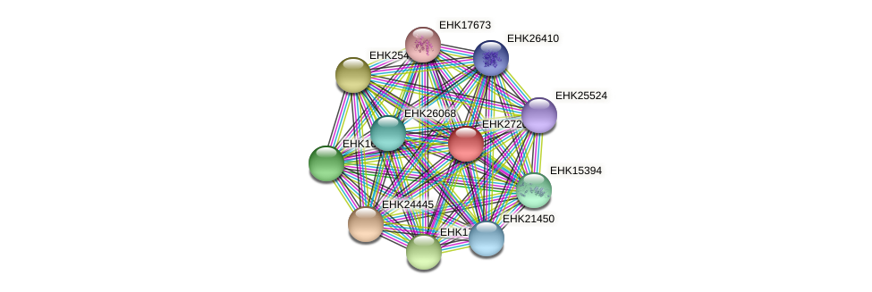 EHK27209 protein (Hypocrea virens) - STRING interaction network