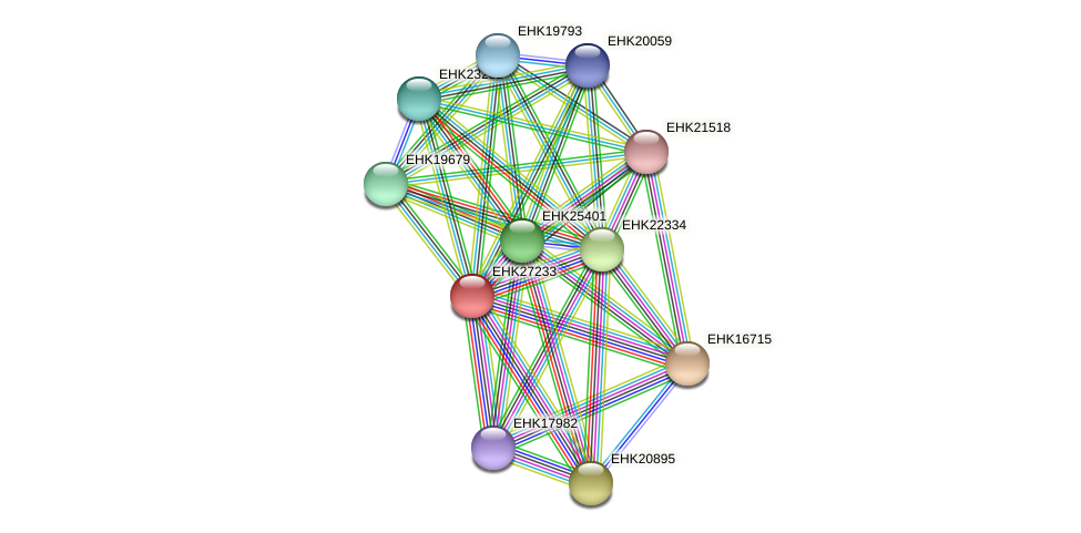 EHK27233 protein (Hypocrea virens) - STRING interaction network