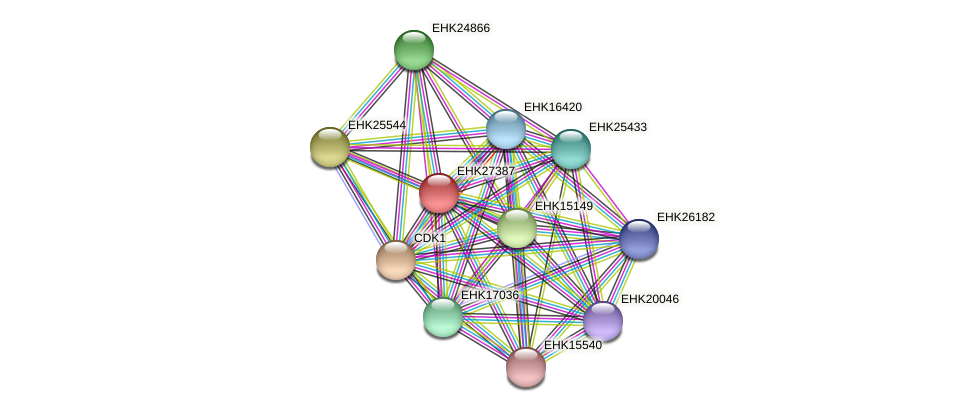 EHK27387 protein (Hypocrea virens) - STRING interaction network