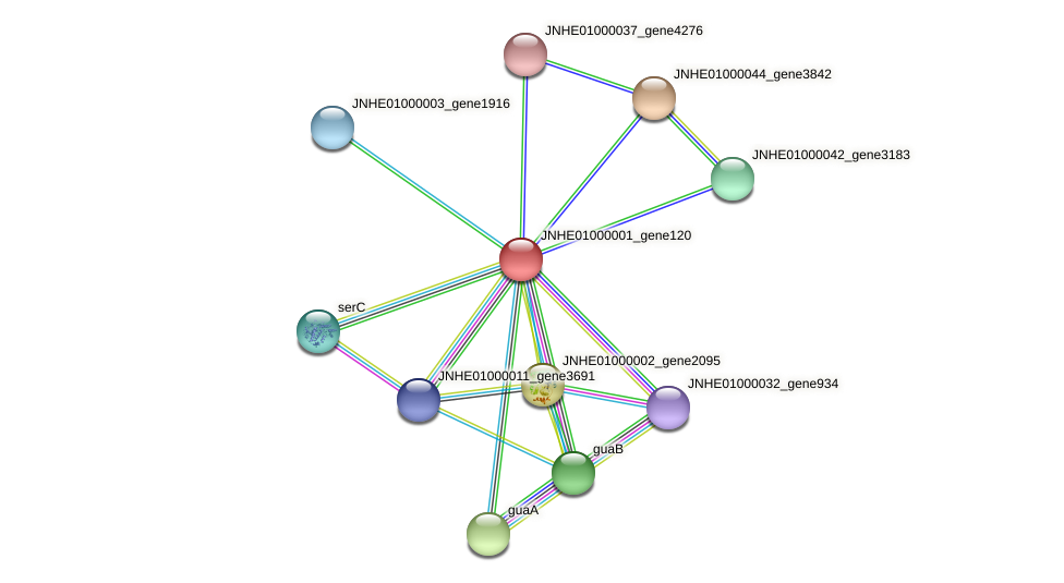 JNHE01000001_gene120 protein (Pseudomonas oleovorans) - STRING interaction network