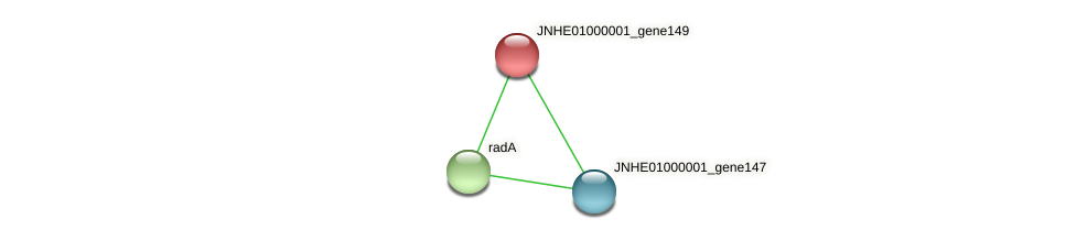 JNHE01000001_gene149 protein (Pseudomonas oleovorans) - STRING interaction network
