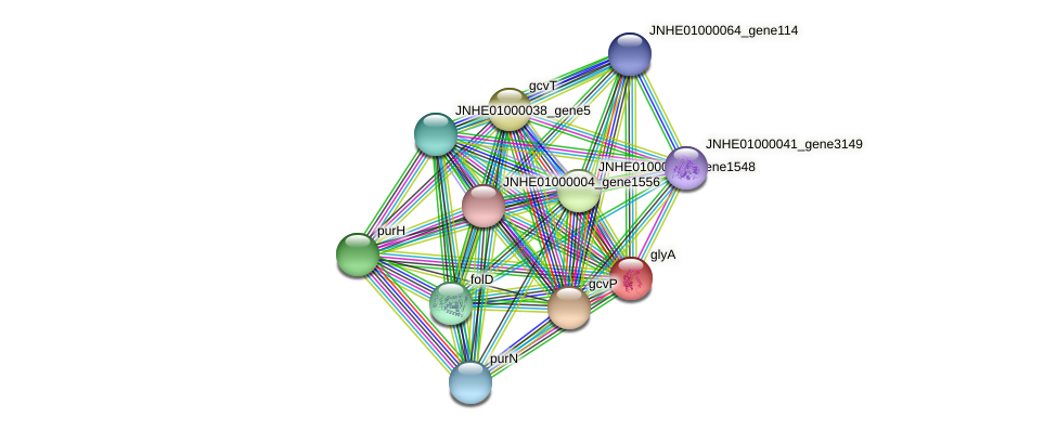 JNHE01000001_gene152 protein (Pseudomonas oleovorans) - STRING interaction network