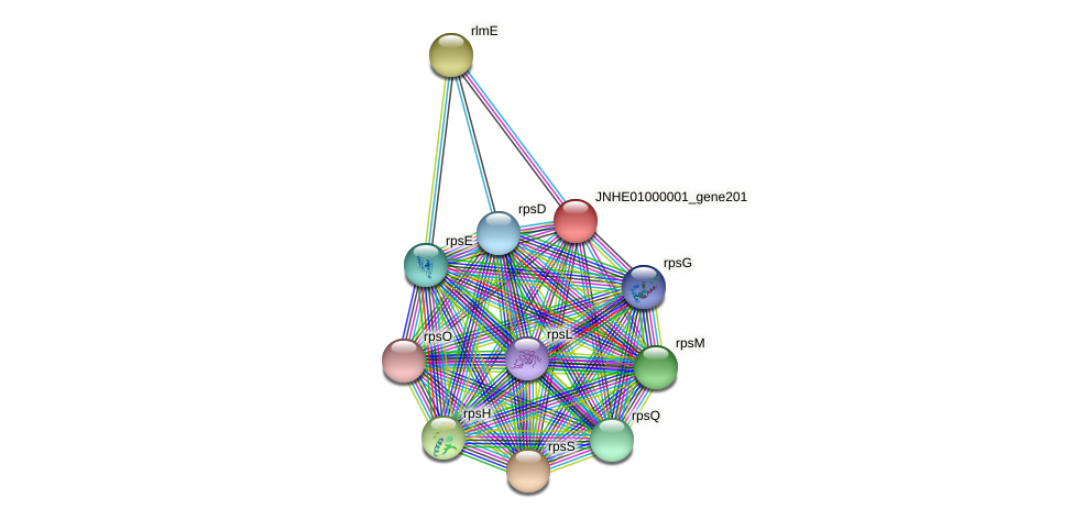 JNHE01000001_gene201 protein (Pseudomonas oleovorans) - STRING interaction network