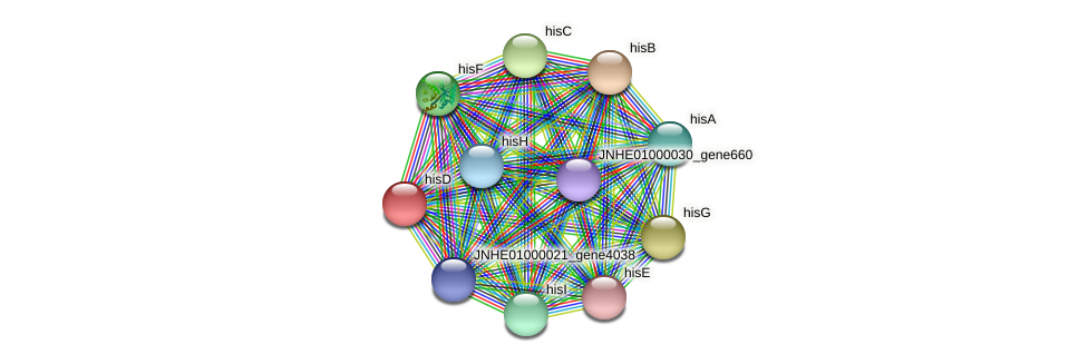 hisD protein (Pseudomonas oleovorans) - STRING interaction network