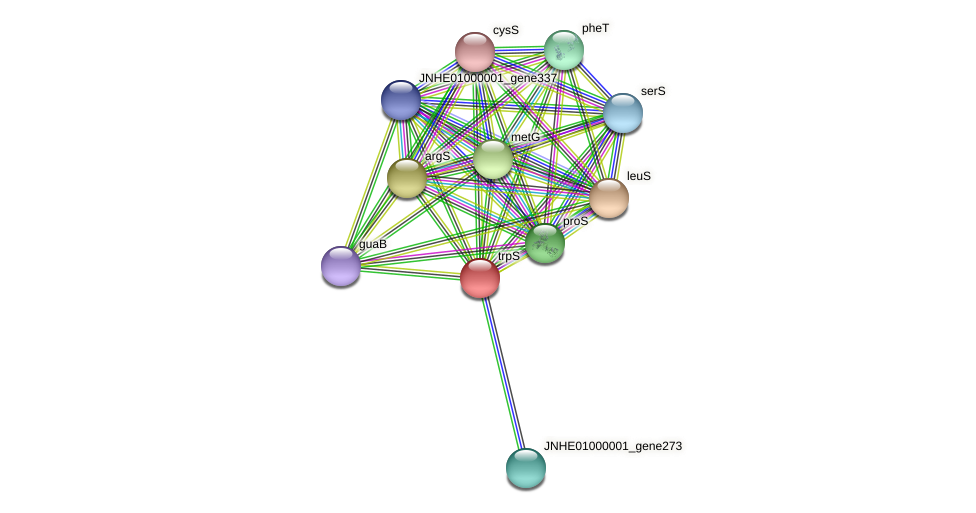 trpS protein (Pseudomonas oleovorans) - STRING interaction network