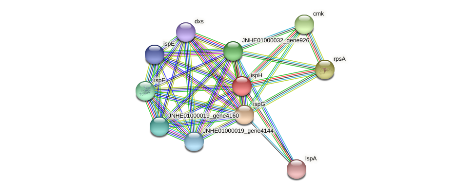 ispH protein (Pseudomonas oleovorans) - STRING interaction network