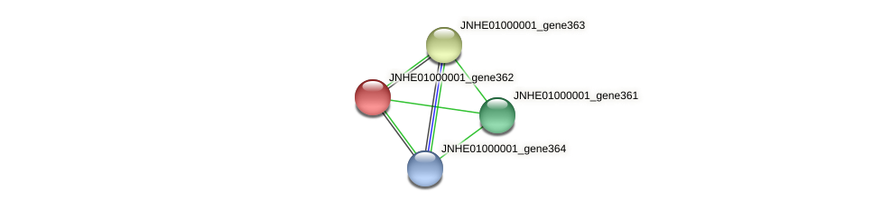 JNHE01000001_gene362 protein (Pseudomonas oleovorans) - STRING interaction network