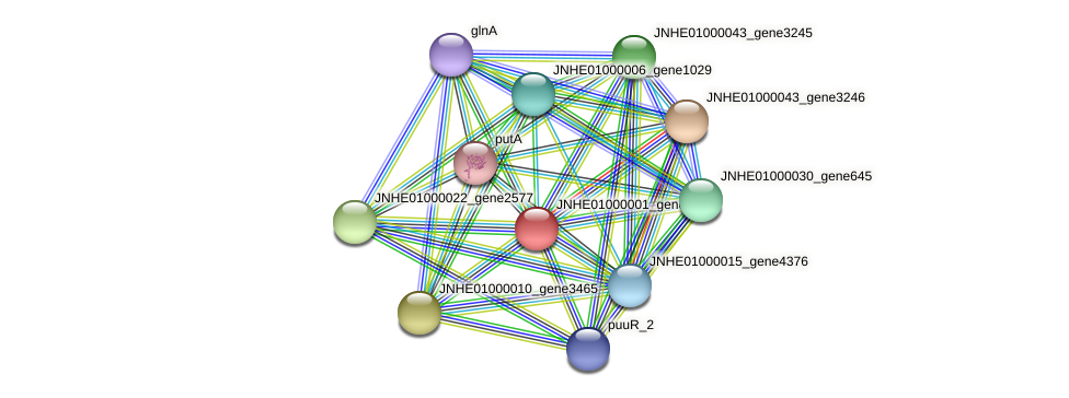 JNHE01000001_gene424 protein (Pseudomonas oleovorans) - STRING interaction network