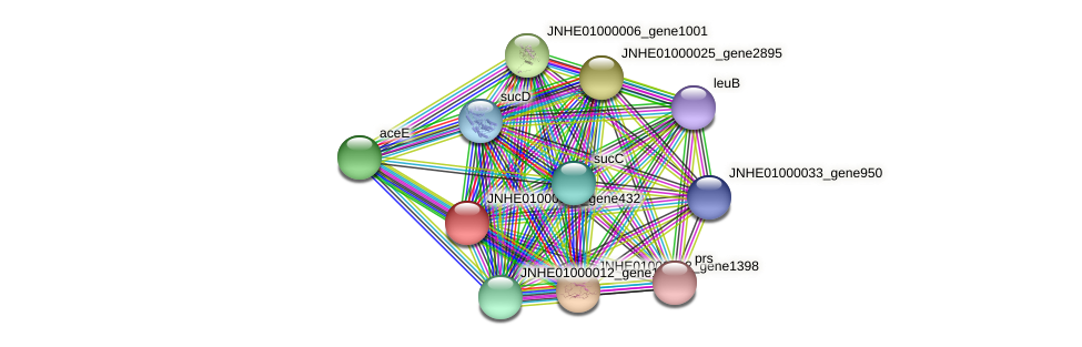 JNHE01000001_gene432 protein (Pseudomonas oleovorans) - STRING interaction network