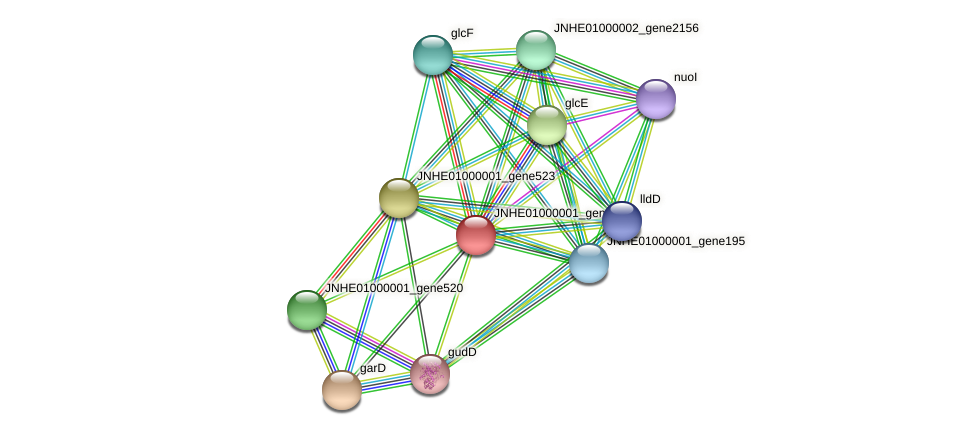 JNHE01000001_gene522 protein (Pseudomonas oleovorans) - STRING interaction network