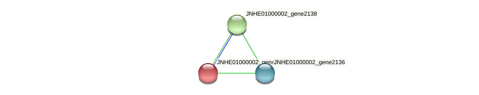 JNHE01000002_gene2137 protein (Pseudomonas oleovorans) - STRING interaction network