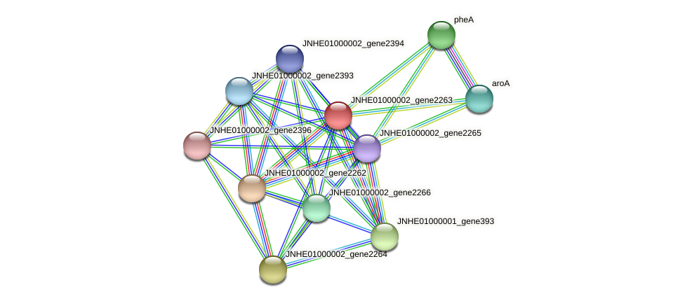 JNHE01000002_gene2263 protein (Pseudomonas oleovorans) - STRING interaction network