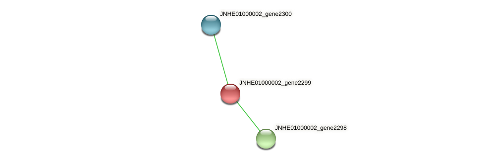 JNHE01000002_gene2299 protein (Pseudomonas oleovorans) - STRING interaction network
