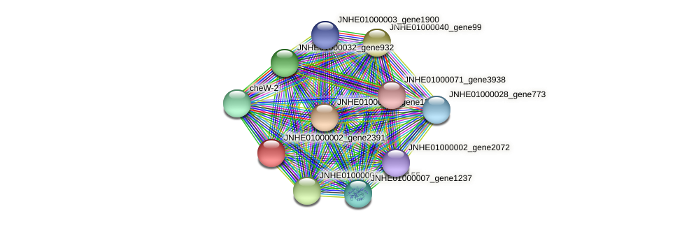 JNHE01000002_gene2391 protein (Pseudomonas oleovorans) - STRING interaction network