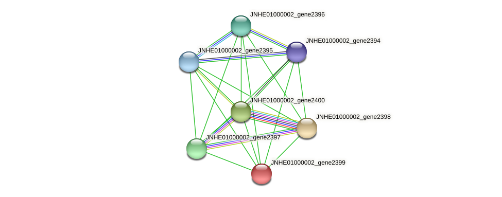 JNHE01000002_gene2399 protein (Pseudomonas oleovorans) - STRING interaction network