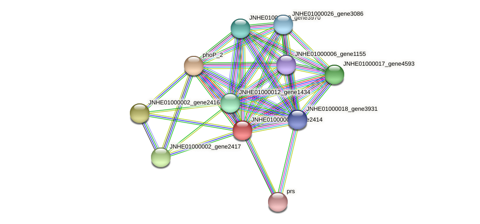 JNHE01000002_gene2414 protein (Pseudomonas oleovorans) - STRING interaction network
