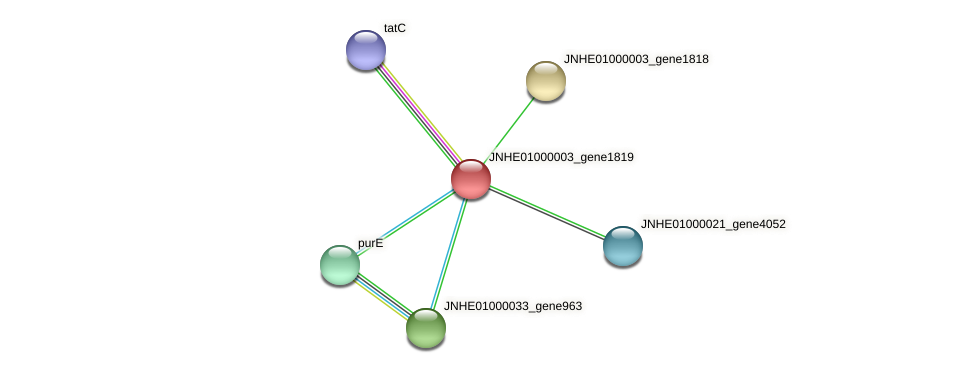 JNHE01000003_gene1819 protein (Pseudomonas oleovorans) - STRING interaction network