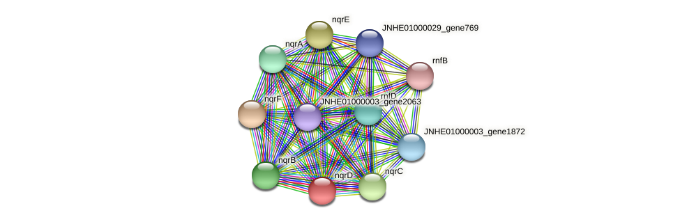 nqrD protein (Pseudomonas oleovorans) - STRING interaction network