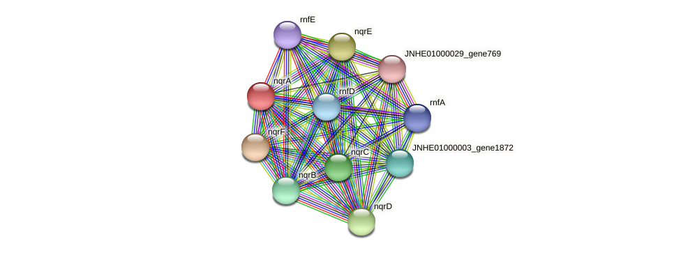 nqrA protein (Pseudomonas oleovorans) - STRING interaction network