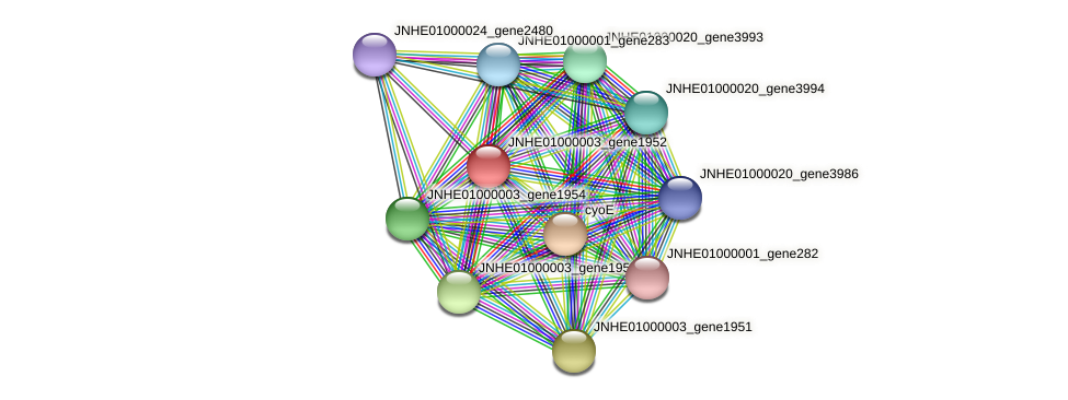 JNHE01000003_gene1952 protein (Pseudomonas oleovorans) - STRING interaction network