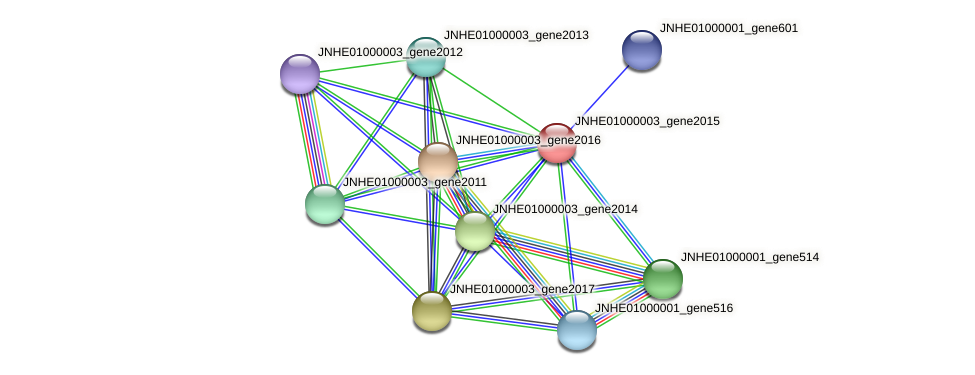 JNHE01000003_gene2015 protein (Pseudomonas oleovorans) - STRING interaction network