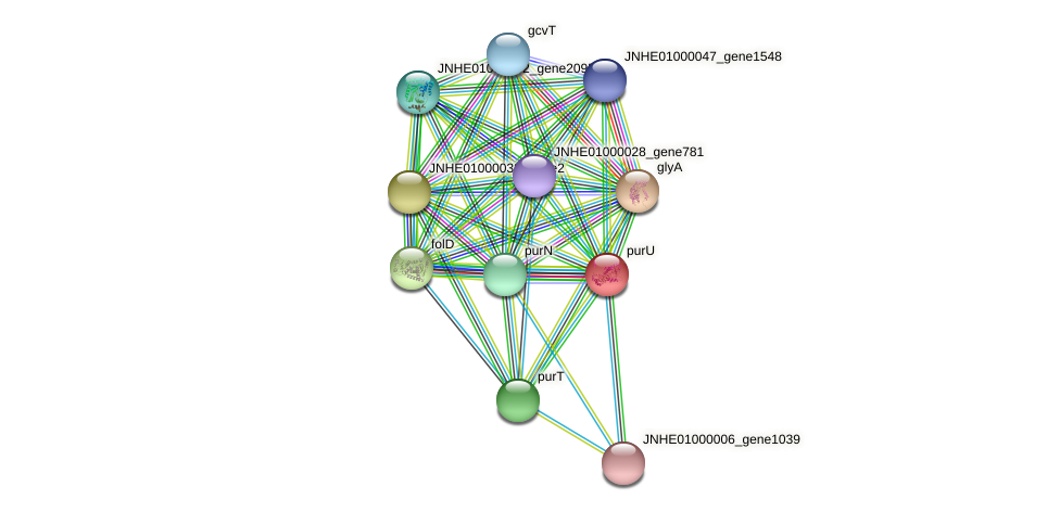 JNHE01000004_gene1578 protein (Pseudomonas oleovorans) - STRING interaction network