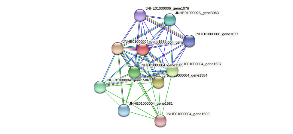 JNHE01000004_gene1583 protein (Pseudomonas oleovorans) - STRING interaction network