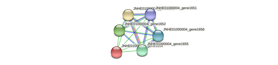 JNHE01000004_gene1654 protein (Pseudomonas oleovorans) - STRING interaction network