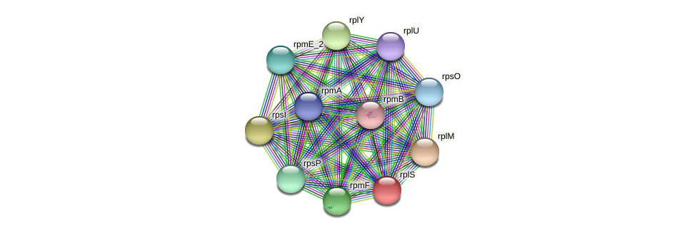 rplS protein (Pseudomonas oleovorans) - STRING interaction network