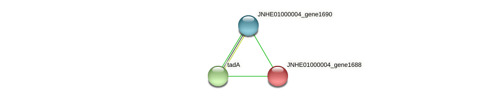 JNHE01000004_gene1688 protein (Pseudomonas oleovorans) - STRING interaction network