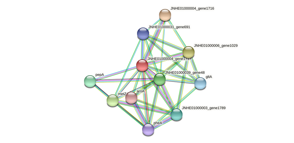 JNHE01000004_gene1717 protein (Pseudomonas oleovorans) - STRING interaction network