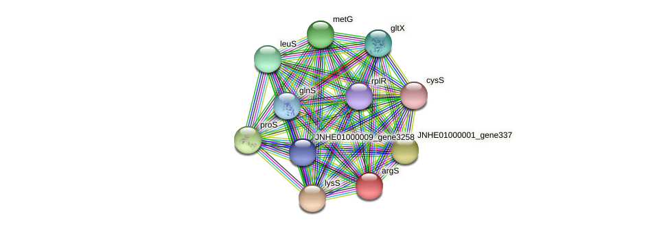 argS protein (Pseudomonas oleovorans) - STRING interaction network