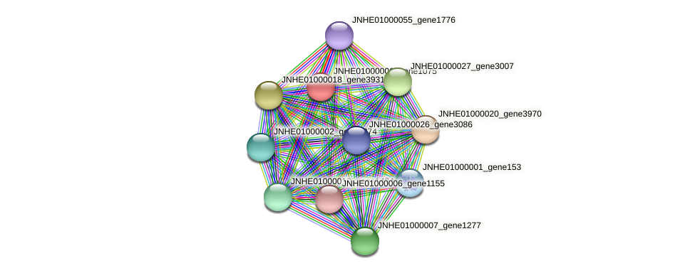 JNHE01000006_gene1075 protein (Pseudomonas oleovorans) - STRING interaction network