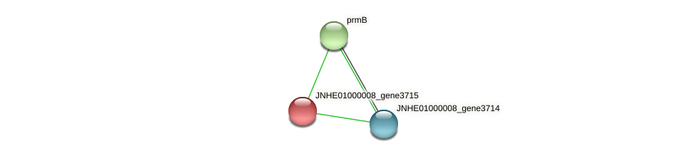 JNHE01000008_gene3715 protein (Pseudomonas oleovorans) - STRING interaction network