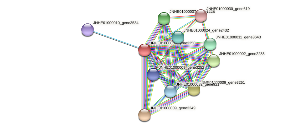 JNHE01000009_gene3250 protein (Pseudomonas oleovorans) - STRING interaction network