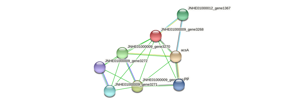 JNHE01000009_gene3268 protein (Pseudomonas oleovorans) - STRING interaction network