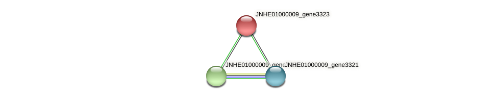 JNHE01000009_gene3323 protein (Pseudomonas oleovorans) - STRING interaction network